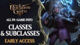 Baldur's Gate 3 Classes Guide: All Classes & Subclasses of BG3 Early Access