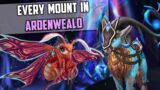 Every Ardenweald Mount and How to Get Them – Shadowlands New Mount Guide