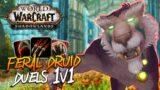 FERAL DRUID DUELS!!! Feral Druid PvP – WoW: Shadowlands 9.0 Prepatch 1v1