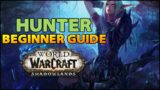 Hunter Beginner Guide   Overview & Builds for ALL Specs (WoW Shadowlands)