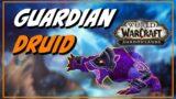Should you main a Guardian Druid in Shadowlands?
