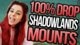 EASY 100% drop Mounts   A Quick Guide to NEW Shadowlands Mounts and Rares