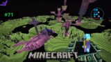 MINECRAFT   RON WENT TO END CITY TO GET ELYTRA FOR HIS FRIENDS