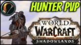 SNIPING IN TWIN PEAKS! | 50-59 Hunter PvP w/ Commentary | Shadowlands – World of Warcraft