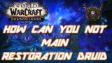 Shadowlands Should You Main Restoration Druid!?