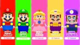 All Playable LEGO Mario Characters in Super Mario 3D World!