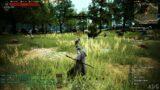 Black Desert Online Gameplay (PS5 UHD) [4K60FPS]
