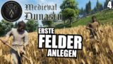 Erste Zwiebel Felder anlegen – 4 – Medieval Dynasty | Deutsch