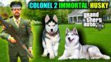 GTA 5 : Military Colonel 02 Immortal Rare Cute Husky In GTA V (Cute Husky Pet)