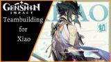 Genshin Impact: Best Teams for Xiao | Xiao Teambuilding