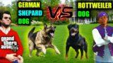 Micheal (GERMAN SEPHARD Dog) Vs Ballas (ROTWEILER Dog ) Fight In GTA V (Aggressive Epic Dog Fight)