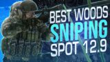 THE BEST SNIPING SPOT ON THE WOODS EXPANSION  – Escape from Tarkov