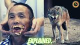Wolf Eats Man But Why? | ELDER SCROLLS | Movie Explained!