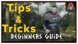 Valheim – Beginner's Guide Tips And Tricks