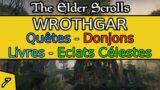 Wrothgar – Partie 7 – Gameplay, Exploration et Levelling – The Elder Scrolls Online   Xbox X