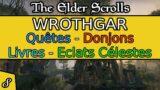 Wrothgar – Partie 8 – Gameplay, Exploration et Levelling – The Elder Scrolls Online | Xbox X