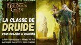 Baldur's Gate 3   Druide – Les classes de Donjons & Dragons 5e (FR)