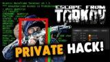 Escape From Tarkov Hack   Cheat EFT   AIMBOT   WALLHACK   MISC   STILL UNDETECTED